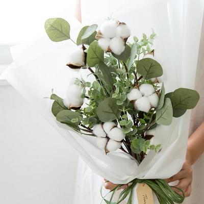유칼립투스 목화꽃다발