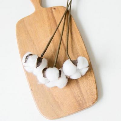한송이 목화가지 (30cm)
