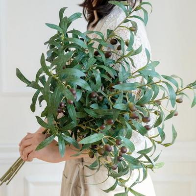올리브나무 열매가지