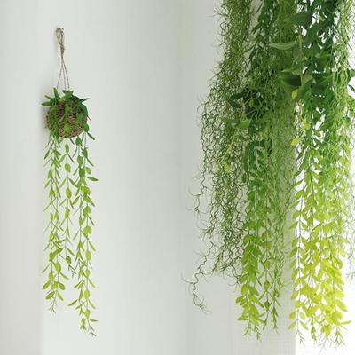 조화 틸란드시아 윌로우잎 바인부쉬 [2type]