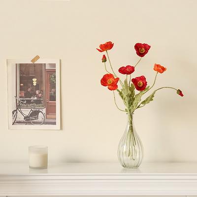 프리미엄 양귀비 물방울호리병set [4color]