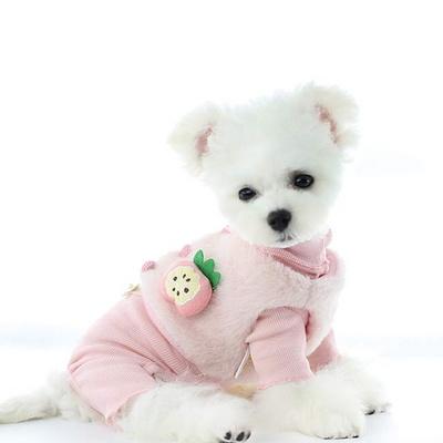 리스펫 강아지옷 올인원 프룻베스트