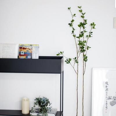 140cm 봄새싹 느낌 그대로 향목가지 실크플라워 단품 인테리어 조화
