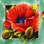 B197 양귀비 꽃잎