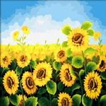 B61 해바라기밭  DIY명화그림그리기