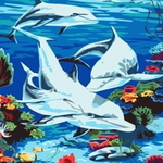 B22 돌고래가족 DIY명화그림그리기