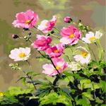 Q1018 꽃정물화 DIY명화그림그리기