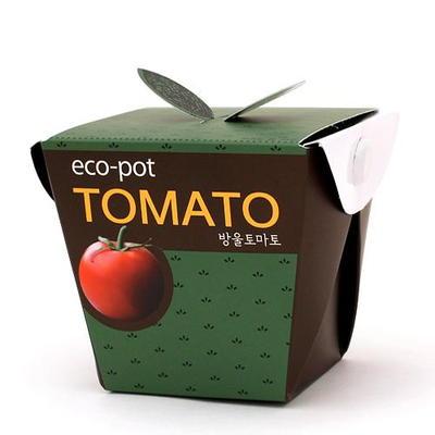 에코팟-방울토마토