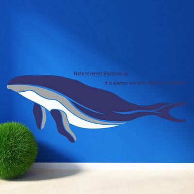 고래 이야기 (SS0041)