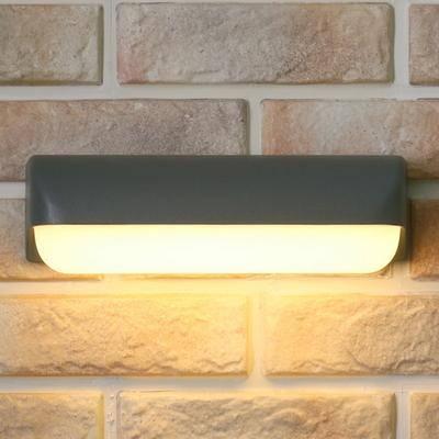 LED 도스 외부벽등 12W