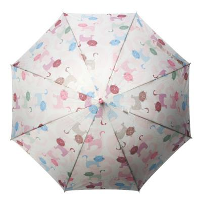 [rain s.] 레인스토리 자동 장우산(양산겸용) - 낭만고양이