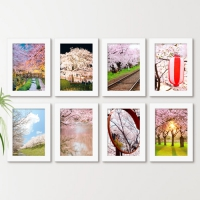 cw890-분홍빛벚꽃가득일본_액자세트