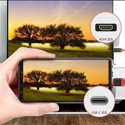아라리 USB C to HDMI 케이블