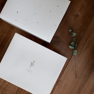디비디 베이직 박스