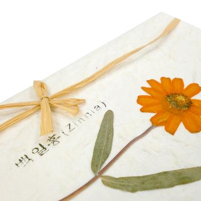 누름꽃 카드_백일홍 (Zinnia)