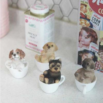 미니 컵속의 강아지