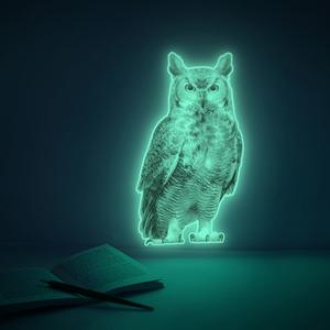 문라잇위즈돔 MOONLIGHT WISDOM (야광 부엉이 스티커)