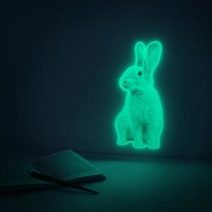 폴로우더레빗 FOLLOW THE RABBIT (야광 토끼 스티커)