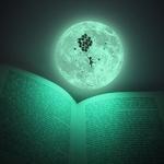 달빛꿈 MOONLIGHT DREAMS II (야광달 일러스트스티커 2)