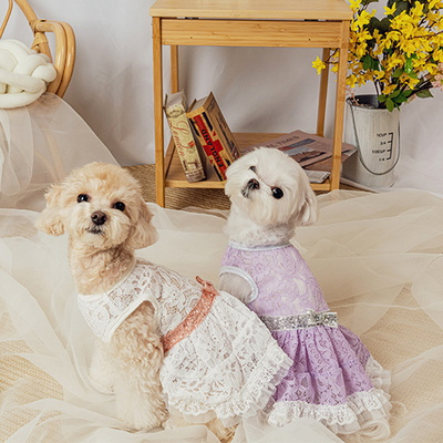 블링 레이스 드레스