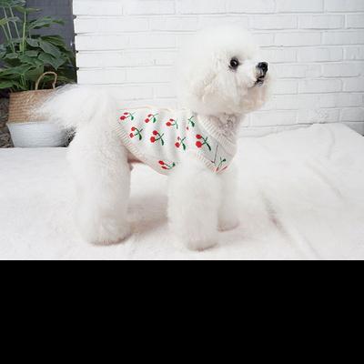 강아지니트 강아지가디건 체리스웨터