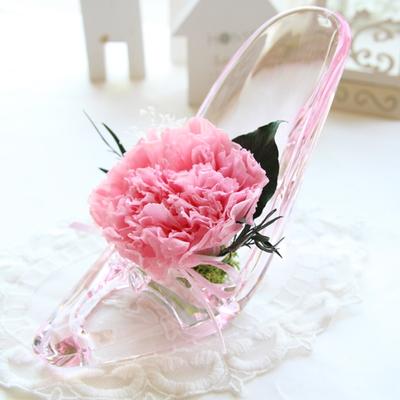 더봄 프리저브드플라워-유리구두카네이션 - 핑크
