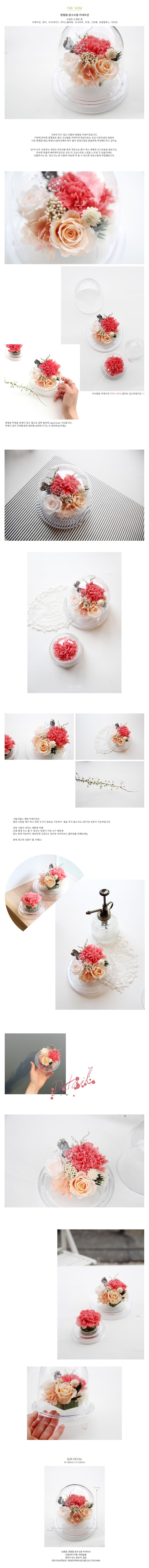 더봄 원형돔 카네이션 - 핑크오팔 - 프리저브드플라워, 52,200원, 조화, 프리저브드