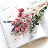 특별한 꽃을 만나 볼 시간