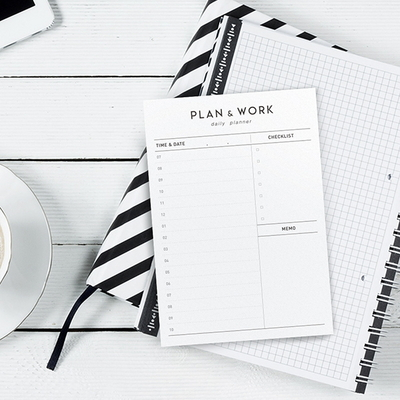 PLAN and WORK daily planner