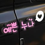 예쁜누나 - 도어가드(018)