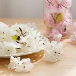 벚꽃봉지(100개입)