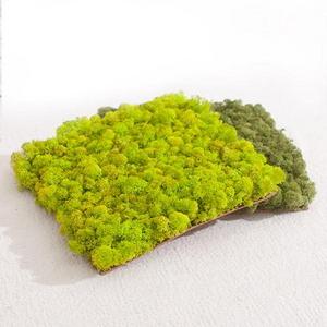 스칸디아모스매트 (4색상)