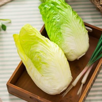 배추 FOFDFT 모형 모조 과일 채소 소품 주방장식