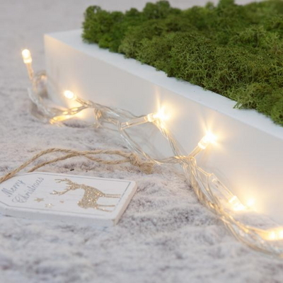 LED 10~50P 건전지용 투명선 트리 전구 장식 TRLEDB