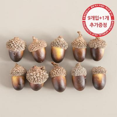 도토리열매(9개입) 모조채소 도토리 소품 장식 FOFDFT