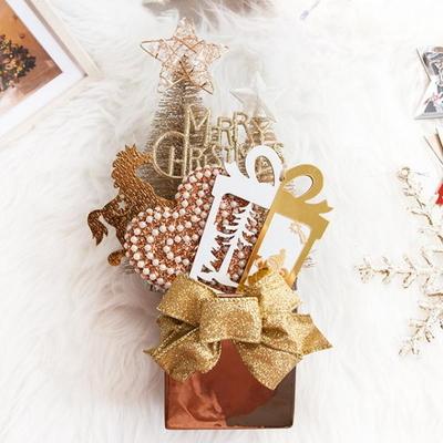 샴페인 선물 화분 36cmP 트리 크리스마스 TRFAHM