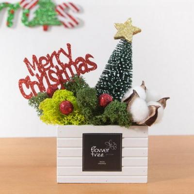 스칸디아 그린솔화분 18cmP 트리 크리스마스 TRFAHM