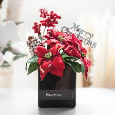 베리 포인 화분 30cmP 트리 크리스마스 TRFAHM
