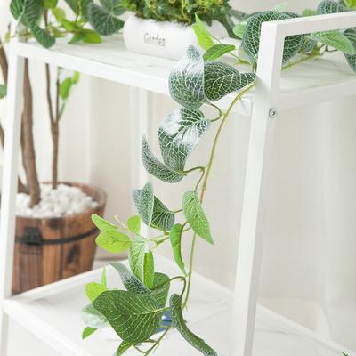 디럭스넝쿨피토니아 180cm 조화 식물 넝쿨 그린 인테리어 플렌테리어 FAIBFT