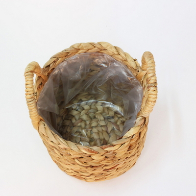 라탄 바구니