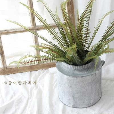 보태니컬 그린 잎 조화 가지 ver.2 - 네프로네피스