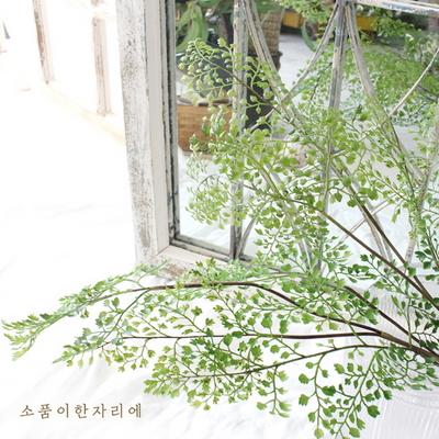 보태니컬 그린 잎 조화 가지 ver.3 - 아디안텀