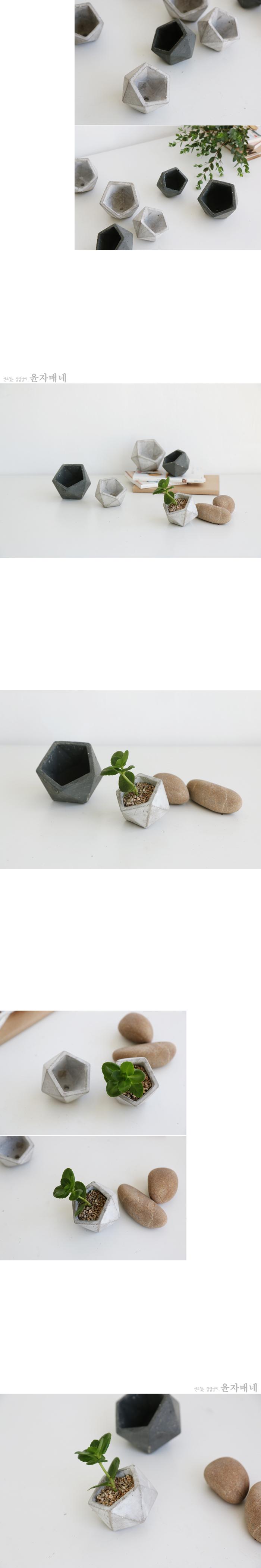 지오메트릭시멘트화분(2size-2color) - 윤자매네, 3,000원, 공화분, 도자기화분