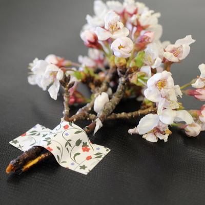 wapping sticker flora1