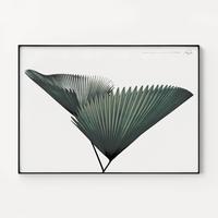 메탈 모던 식물 보타니컬 포스터 액자 나뭇잎D_초대형