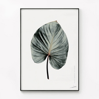 메탈 식물 보테니컬 인테리어 포스터 액자 나뭇잎F_대형