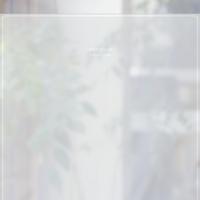 컬러 안개시트 북유럽 스타일 CW589