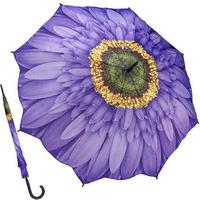 위스테리아 데이지 - 원목 자동장우산