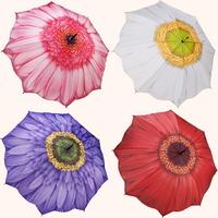 3월의탄생화 - 갤러리아 데이지 우산 (3단-장우산)