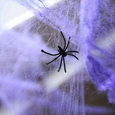 거미줄 (6color)